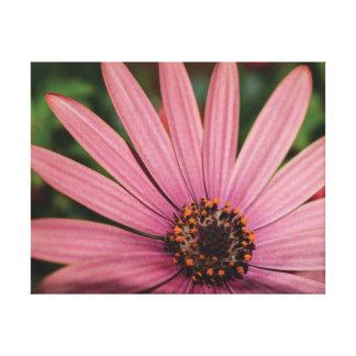 Impressão Em Tela Flores alaranjadas & roxas da foto bonita do