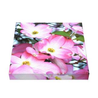 Impressão Em Tela Flores cor-de-rosa do Dogwood