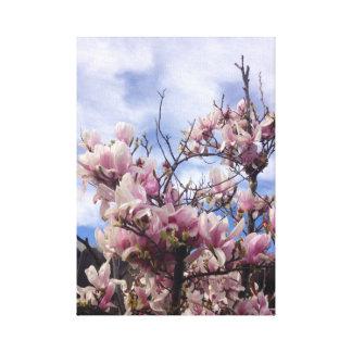Impressão Em Tela Flores da árvore de tulipa. Soulangeana da