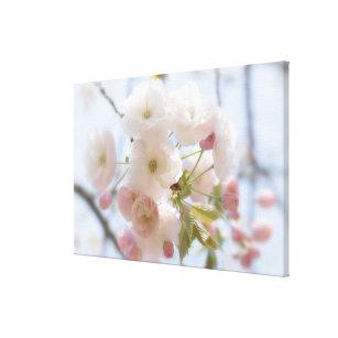 Impressão Em Tela Flores de cerejeira 3