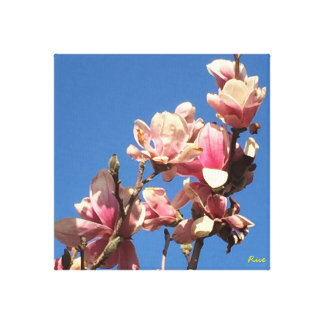 Impressão Em Tela Flores de cerejeira na Omaha-pintura