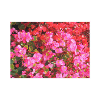 Impressão Em Tela Flores fúcsia/rosa e do vermelho
