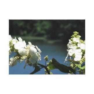 Impressão Em Tela Flores no lago