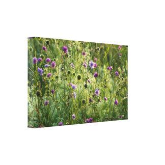 Impressão Em Tela Flores selvagens roxas em um prado verde