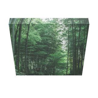 Impressão Em Tela Floresta de bambu