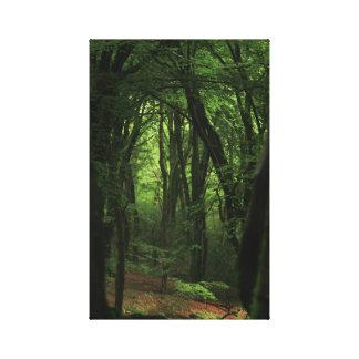 Impressão Em Tela Floresta de Etheral