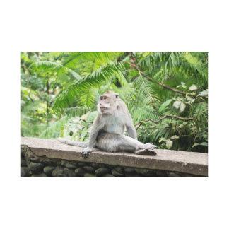 Impressão Em Tela Floresta do macaco