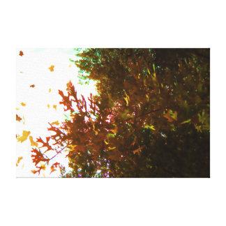 Impressão Em Tela Folhas da queda