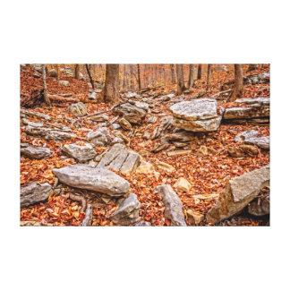 Impressão Em Tela Folhas de outono no vale