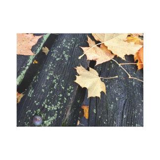 Impressão Em Tela Folhas rústicas da queda na madeira
