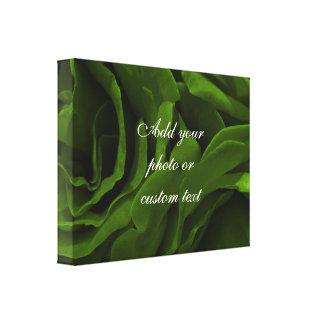 Impressão Em Tela Foto aveludado da flor dos rosas da verde azeitona
