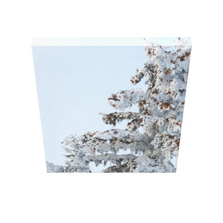 Impressão Em Tela foto verde nevado da arte
