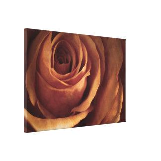 Impressão Em Tela Fotografia cor-de-rosa recentemente aberta do