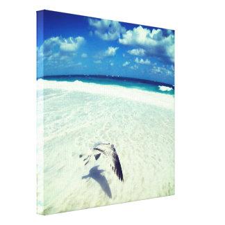 Impressão Em Tela Gaivota do vôo na praia