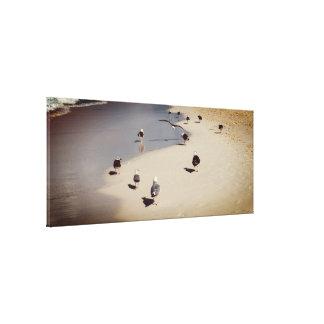 Impressão Em Tela Gaivotas de passeio na praia