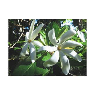 Impressão Em Tela Gardenia de Tahitian