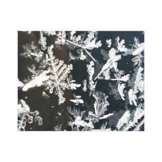 Impressão Em Tela Gelo