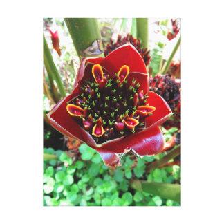 Impressão Em Tela Gengibre preto da tocha da tulipa