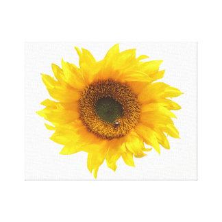Impressão Em Tela girassol amarelo