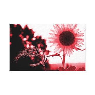 Impressão Em Tela Girassol cor-de-rosa