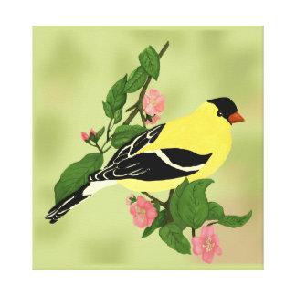 Impressão Em Tela Goldfinch em uma árvore de cereja de florescência