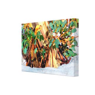 Impressão Em Tela Goma selvagem da flora de Austrália enterrada na