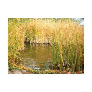 Impressão Em Tela Grama longa em uma lagoa
