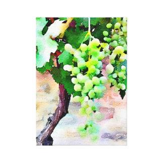 Impressão Em Tela Grupo de uvas