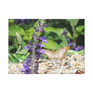 Impressão Em Tela Jardim da borboleta