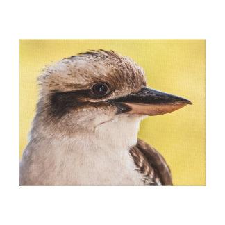 Impressão Em Tela Kookaburra