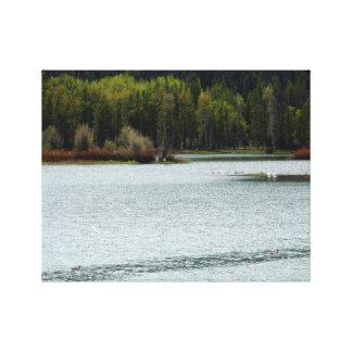 Impressão Em Tela Lago bonito na natureza