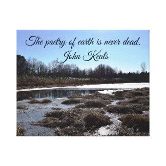 Impressão Em Tela Lagoa gelada w/Quote por John Keats