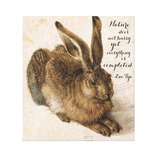 Impressão Em Tela Lebre por Durer com citações da natureza 17 x 19