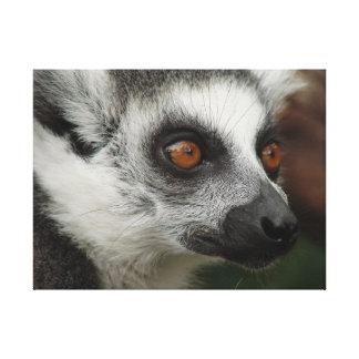 Impressão Em Tela Lemur