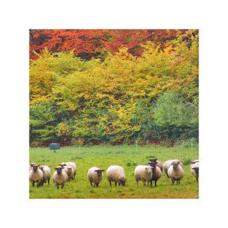 Impressão Em Tela Linho - Sheep Family
