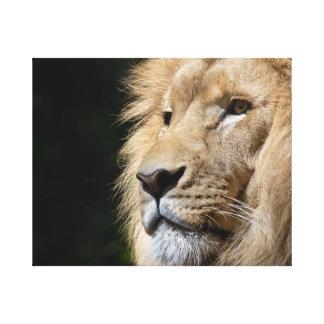 Impressão Em Tela Lionheart