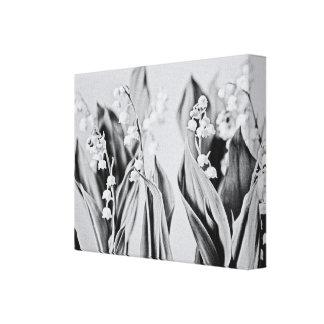 Impressão Em Tela Lírio do vale em preto e branco