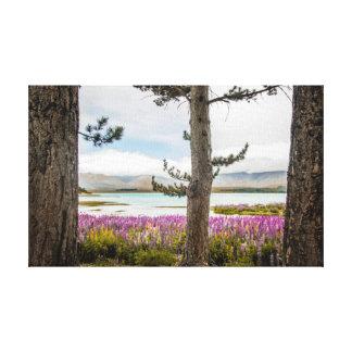 Impressão Em Tela Lupins de Tekapo do lago