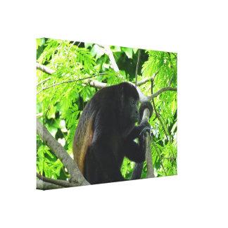 Impressão Em Tela Macaco de Howler
