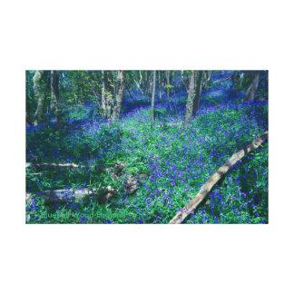 Impressão Em Tela Madeira Inglaterra do Bluebell