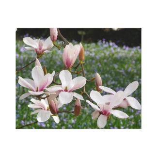 Impressão Em Tela Magnólia cor-de-rosa de florescência (Tulpenbaum)
