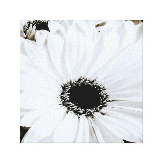 Impressão Em Tela Margaridas brancas - modelo personalizado da flor