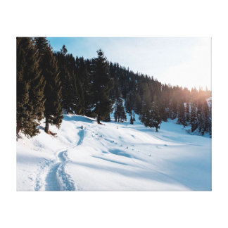 Impressão Em Tela Neve da paisagem   da fotografia   da natureza