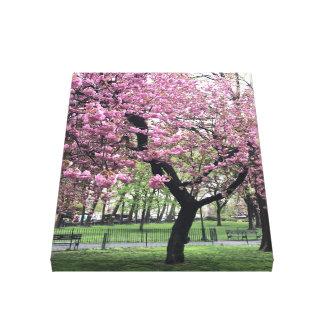 Impressão Em Tela Nova Iorque da árvore NYC da primavera das flores
