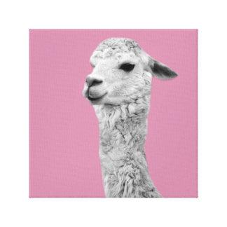 Impressão Em Tela O berçário da foto do animal de fazenda da alpaca