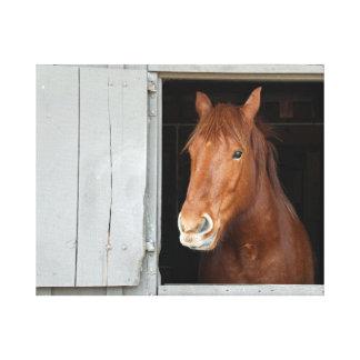 Impressão Em Tela O cavalo de um quarto da castanha que espera para