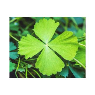 Impressão Em Tela O dia de St Patrick