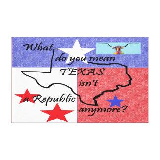 Impressão Em Tela O que você significam TEXAS não é uma república
