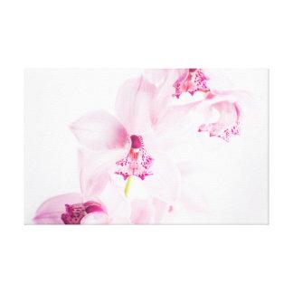 Impressão Em Tela Orquídea cor-de-rosa