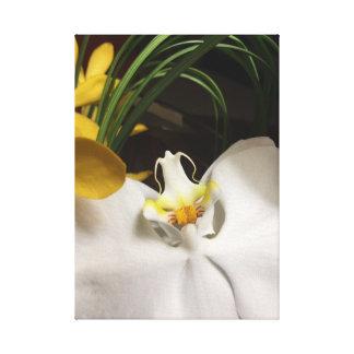 Impressão Em Tela Orquídea exótica e frondas de arqueamento